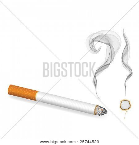 burning cigarette banner, vector