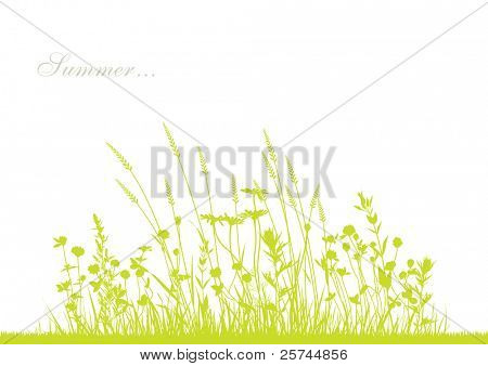 vector grass and flowers silhouette background