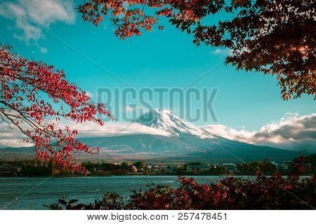Vintage Autumn Of Mount Fuji
