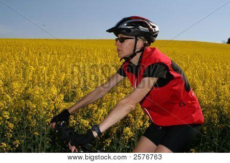 Biking #1