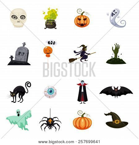 poster of Set Of Halloween Feast, Collection Of Attributes Halloween Skull, Vampire, Witch Cauldron, Witch On