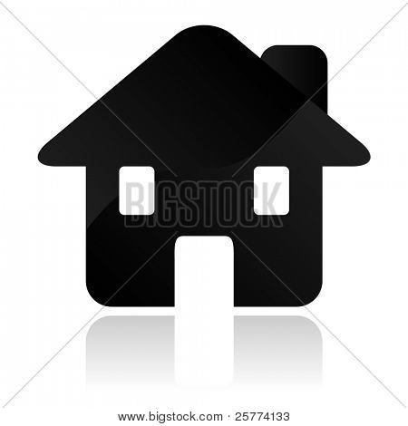 Vector Home icon.