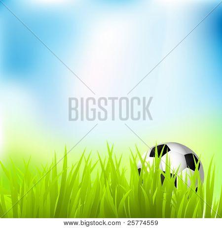 Soccer Ball On Grass Under A Blue Sky, Vector.
