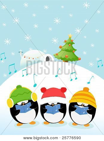 Caroler Penguins