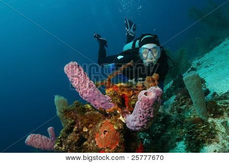 Scuba Diver and Purple Vase Sponges
