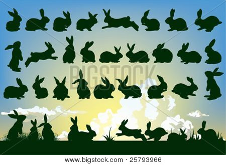 easter rabbit outlines with sky background