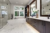 Master Modern Bathroom Interior In Luxury Home With Dark Hardwood Cabinets, White Tub And Glass Door poster