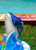 pic of floaties  - Inflatable water toy on lawn next to pretty pool - JPG
