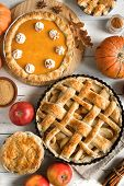 Thanksgiving Pumpkin And Apple Various Pies, Top View, Copy Space. Fall Traditional Homemade Apple A poster