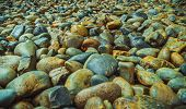 Wet Sea Pebbles, Wet Gravel, Beautiful Texture, Sea Gravel Is A Variety Of Colors. poster