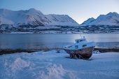 Landscape Of Norway In Winter During Blue Hour. Norwegian Coastline In Winter. Mountain Covered With poster