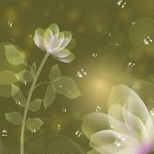 stock photo of beautiful flower  - Beautiful flower green background - JPG