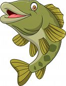 Vector Illustration Of Cartoon Bass Fish Isolated On White Background poster