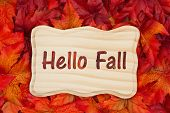Hello Fall, Some Fall Leaves And A Wood Frame With Text Hello Fall poster