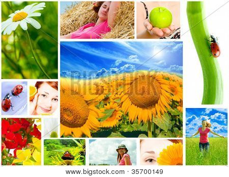 Spring, summer, spa, multi image