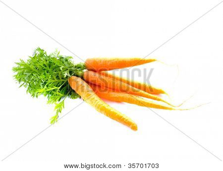 Carrot fresh vegetable