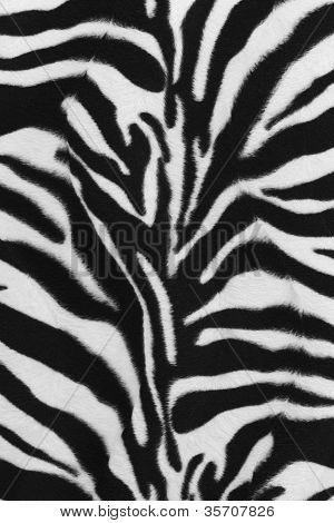 Background Of Zebra Skin Pattern