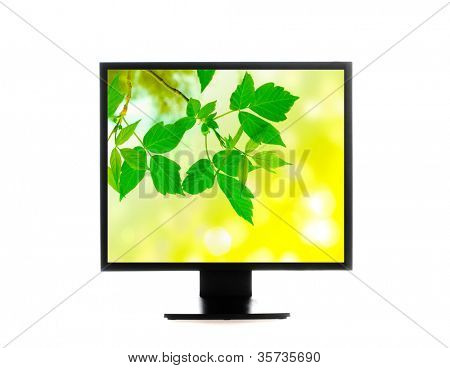computer monitor. Isolated over white background