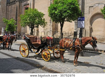SEVILLE, SPAIN - MAY 18: Carriages in front of the Cathedral on May 18, 2012 in Seville, Spain. About a hundred carriages make tours around the center of Seville and the famous Maria Luisa Park