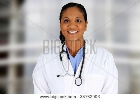 Minority doctor working at her job in a hospital