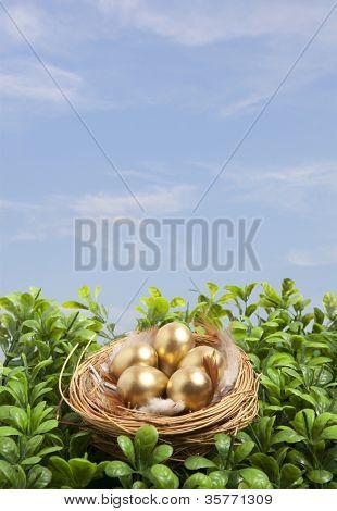 Golden eggs in nest on blue sky