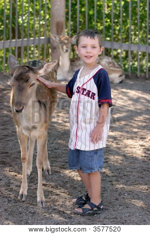Young Boy Touching The Back Of A Small Deer Outside