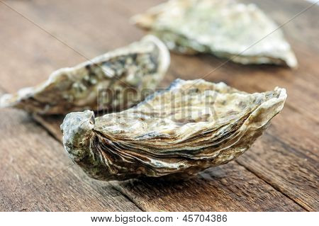 oysters on wood table closeup