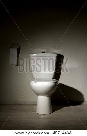 Toilet bowl in a bathroom