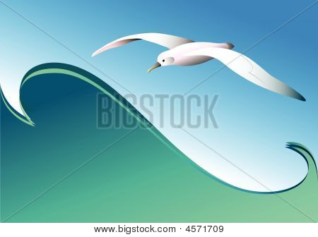 Seagull And Wave. Vector.