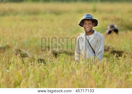 Happy farmer in rice field, Thailand