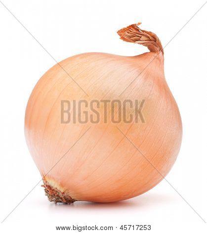 bulbo de la cebolla de oro sobre el recorte del fondo blanco
