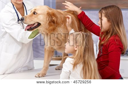 Little sisters and dog at veterinary surgeon, vet examining dog.