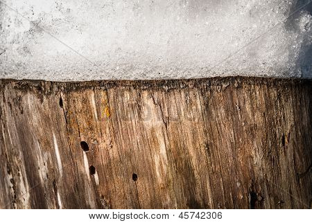 Nature Background Of Stump With Snow On It.
