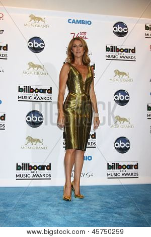 LOS ANGELES -  MAY 19:  Celine Dion in the press room at the Billboard Music Awards 2013 at the MGM Grand Garden Arena on May 19, 2013 in Las Vegas, NV