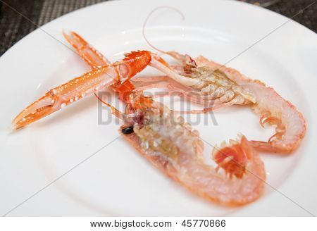 Scampi cut in halves on plate