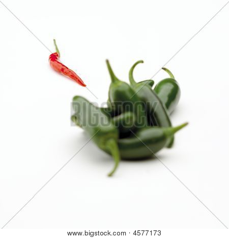 Jalapenos On White