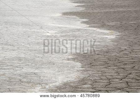Salt Land