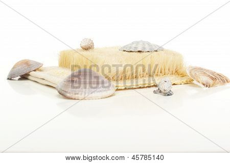 A Beautiful Wellness Decoration With Brush And Seashells