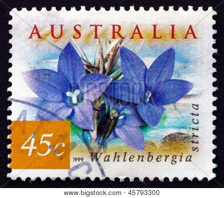 Postage Stamp Australia 1999 Australian Bluebell, Wildflower