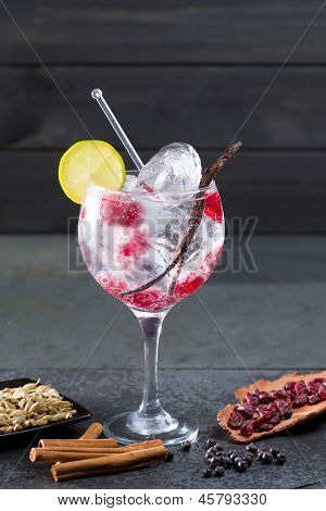 Gin tonic cocktail with raspberry lima slice and ice vanilla cardamom juniper berries on black