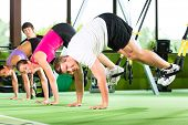 picture of suspension  - Group of people exercising with suspension trainer in fitness club or gym - JPG