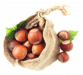 Hazelnuts in sack isolated