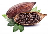 stock photo of cocoa beans  - Cocoa pod on a white background - JPG