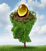 foto of human egg  - Managing your nest egg as a financial concept with a growing green tree in the shape of a human head supporting a nested investment for future retirement fund as a 401 K plan - JPG