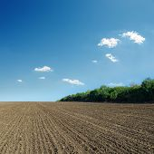 ploughed field in spring and blue sky