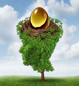 stock photo of human egg  - Managing your nest egg as a financial concept with a growing green tree in the shape of a human head supporting a nested investment for future retirement fund as a 401 K plan - JPG
