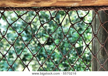 Netting Background