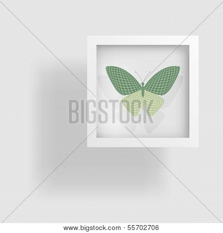 butterfly in the picture and its reflection