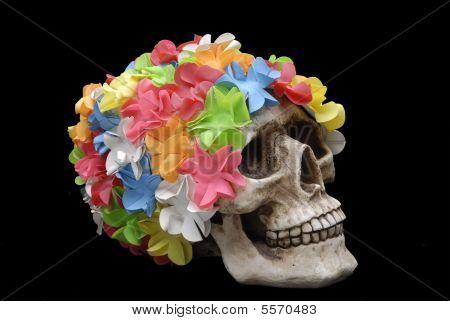 Skull Fashion