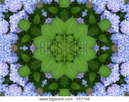 Spring Kaleidoscope